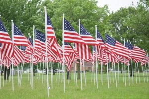 multiple US flags in ground at memorial